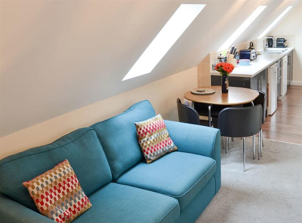 Stylish open-plan studio space at Oak View Lodge,