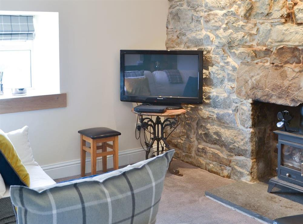 Delightful living room at Strathy Bay Cottage in Strathy, Caithness