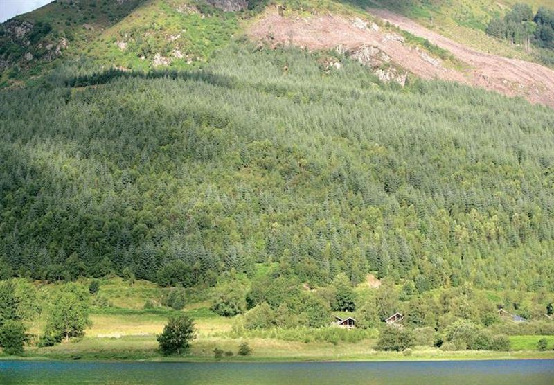 The stunning backdrop of Ben Ledi at Strathyre Forest in Perthshire, Scotland