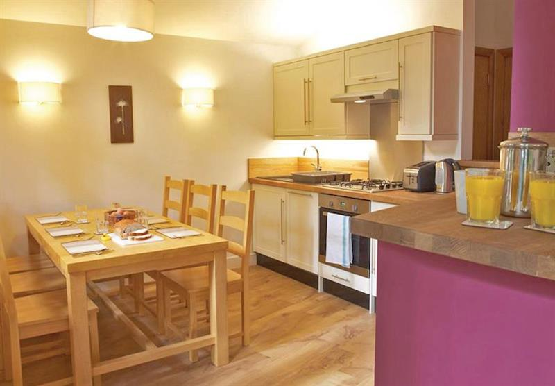 Typical Silver Birch 2 at Strathyre Lodges in Callander, Perthshire & Southern Highlands