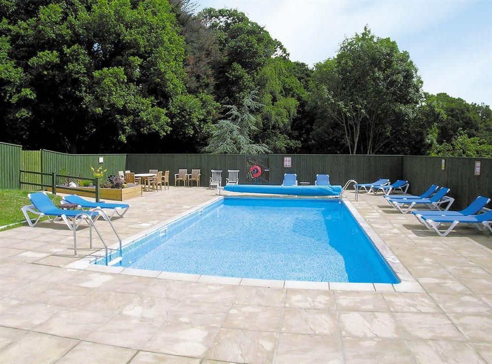 Shared swimming pool at Sundance in Cheriton Bishop, Devon