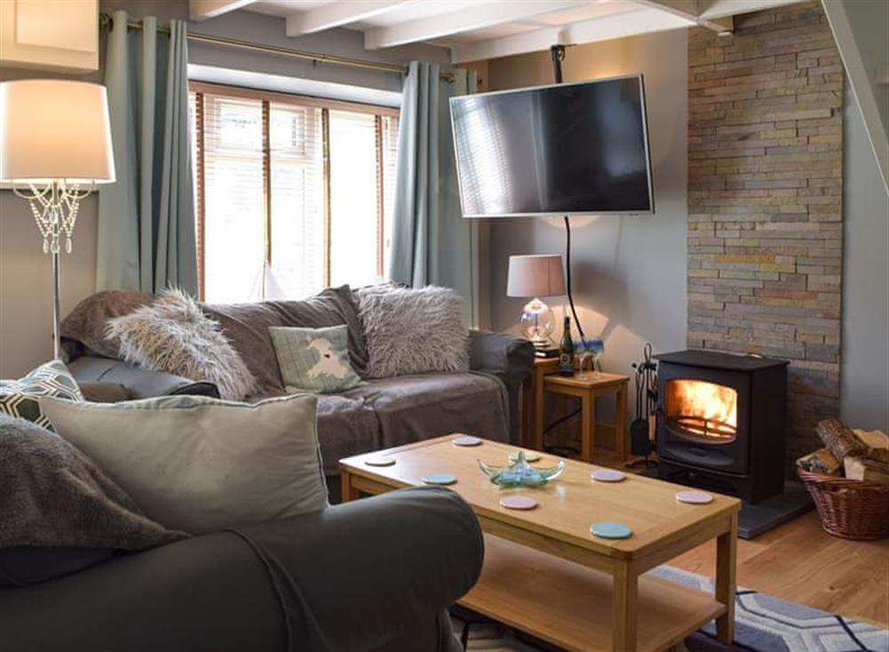 Cosy living room with wood burner at Sunnydale in Cilgerran, near Cardigan, Dyfed