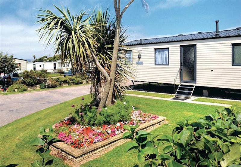 Photo 1 at Surf Bay Holiday Park in Devon, South West of England