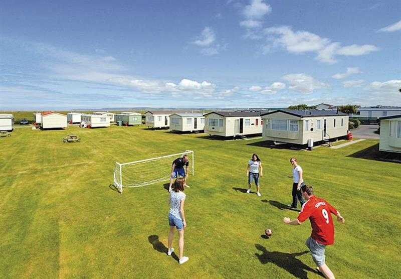 Photo 6 at Surf Bay Holiday Park in Devon, South West of England
