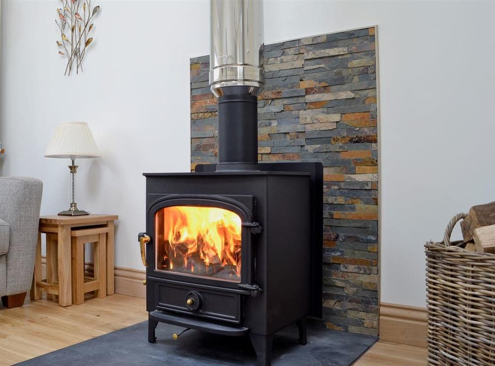 Cosy living area with wood burner (photo 2) at Swallows in Borgue, near Kirkcudbright, Kirkcudbrightshire