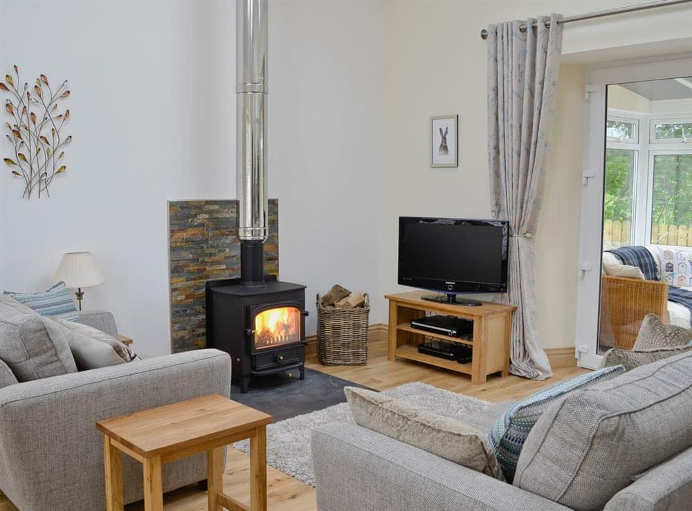 Cosy living area with wood burner at Swallows in Borgue, near Kirkcudbright, Kirkcudbrightshire