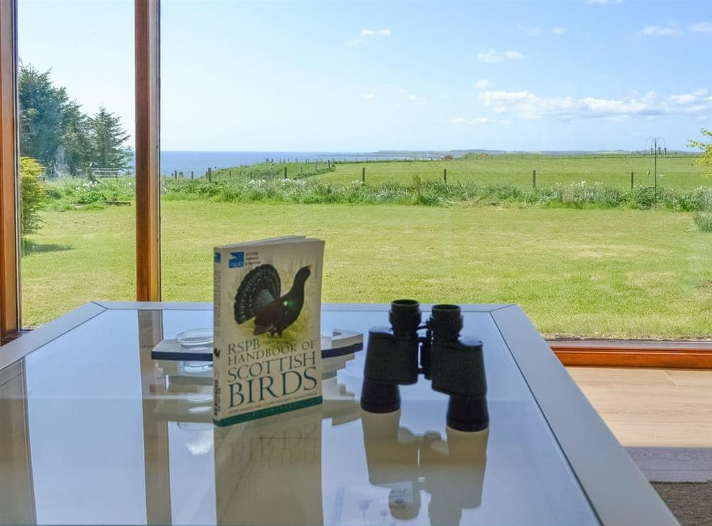 Spectacular sea views from the Living area at Sweet Hope in St Cyrus, near Montrose, Aberdeenshire