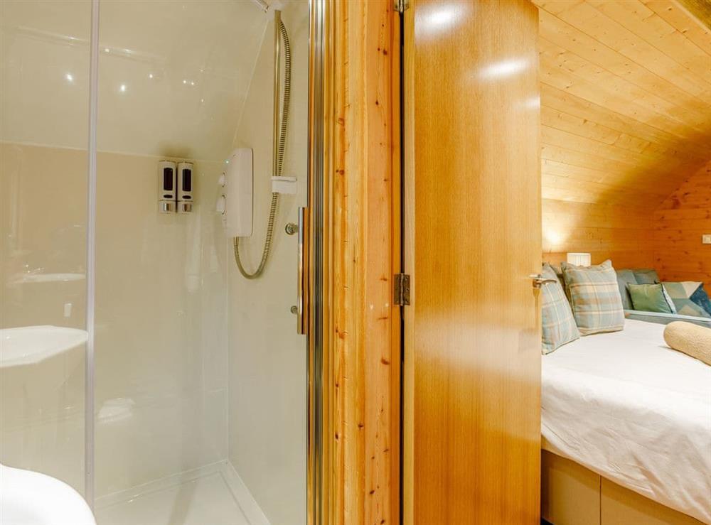 Shower room (photo 2) at Badger,
