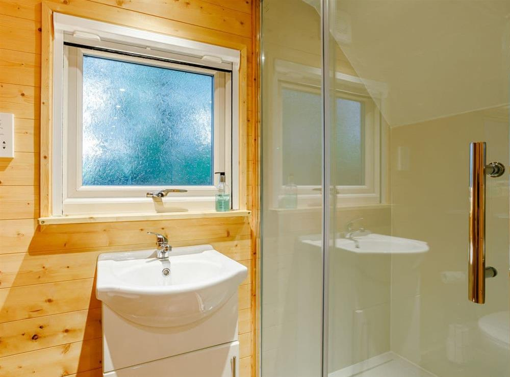 Shower room at Badger,