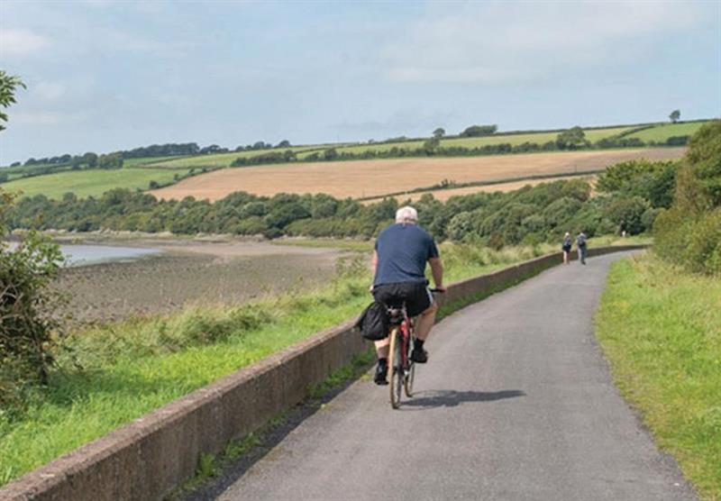 Cycling at Tarka Holiday Park in Ashford, Barnstaple