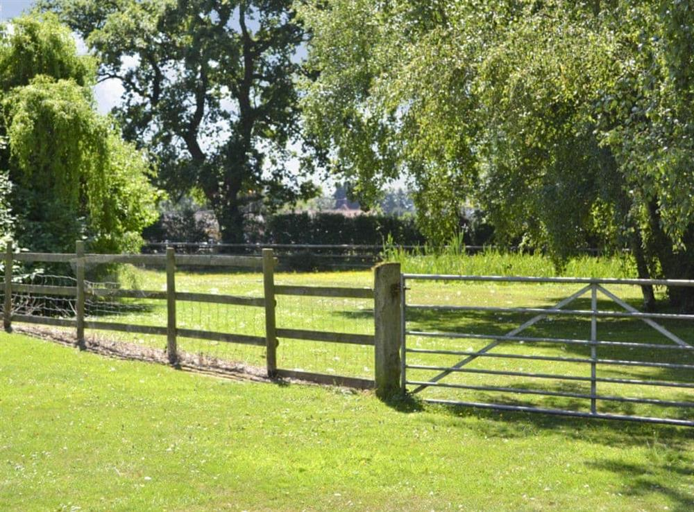 Garden and grounds at The Stables,