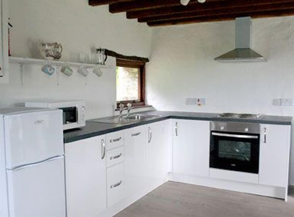 Kitchen at Teifi in Llangoedmor, Nr Cardigan, Dyfed., Great Britain