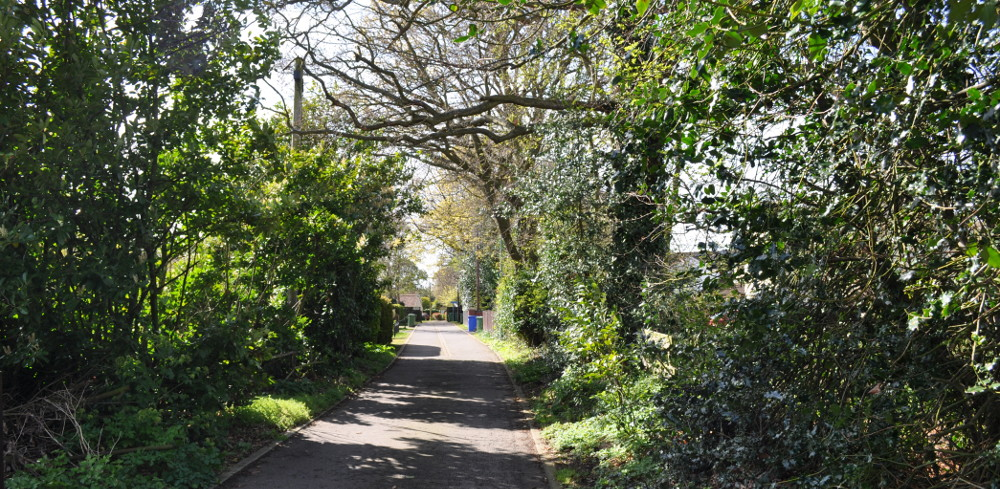 The lane at The Beech House in Corton near Lowestoft in Suffolk