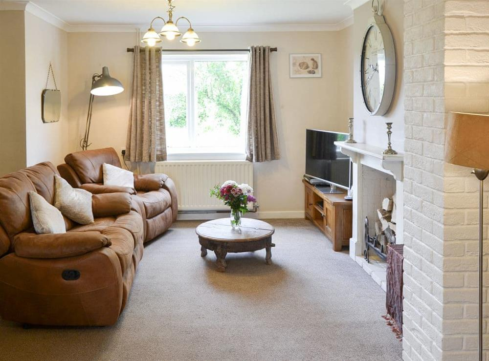 Attractive living room at The Boat House in Catfield, near Ludham, Norfolk