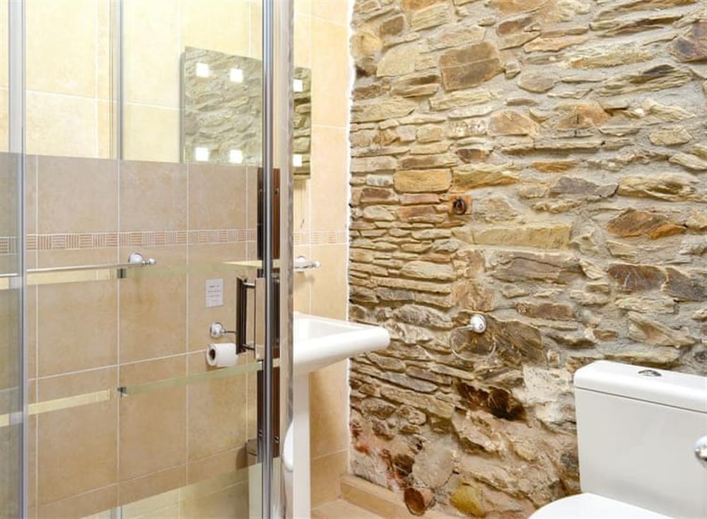 Shower room (photo 2) at The Coach House in Gulworthy, near Tavistock, Devon