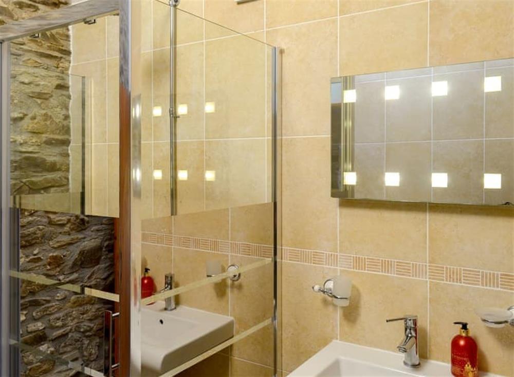 Shower room at The Coach House in Gulworthy, near Tavistock, Devon