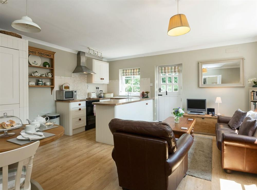 Open plan living/dining room/kitchen at The Coach House in Tattingstone, Suffolk., Great Britain