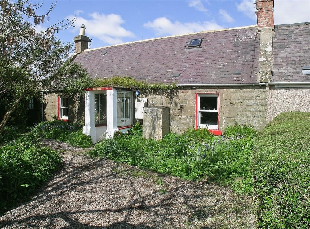 Exterior at The Cottage in St. Cyrus, Montrose, Angus