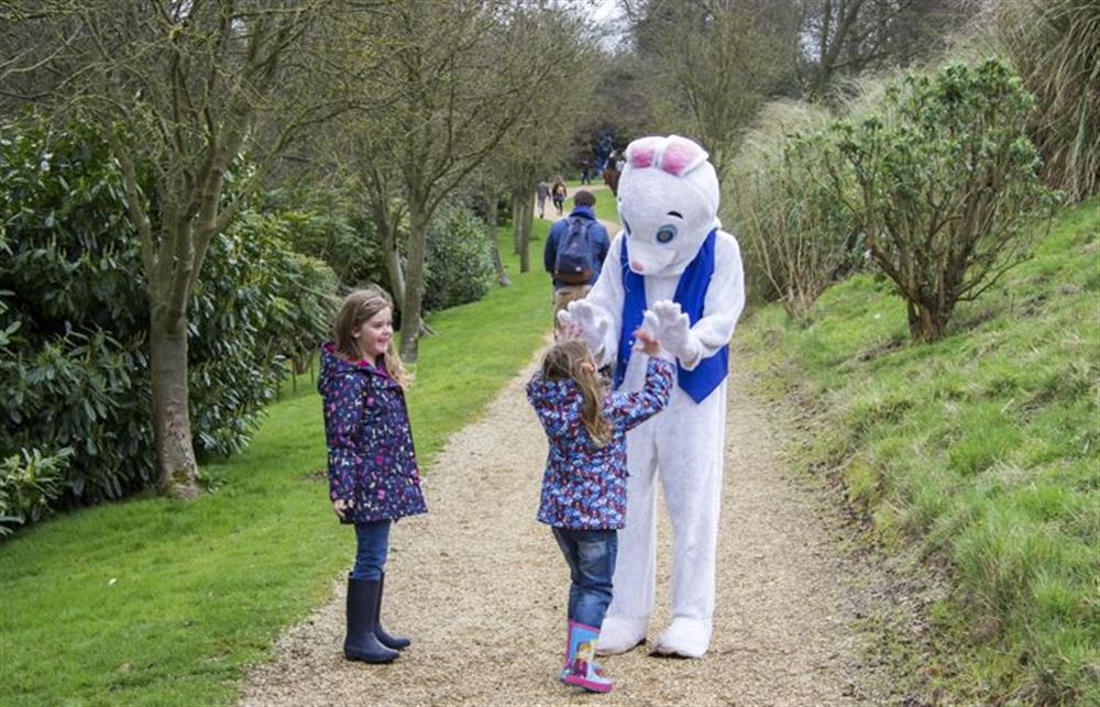 Fun for the family with Easter Egg hunts