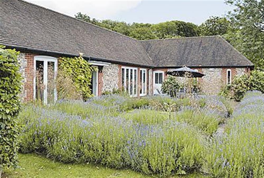 Garden at The Fishing Lodge in Netton, near Salisbury, Wiltshire