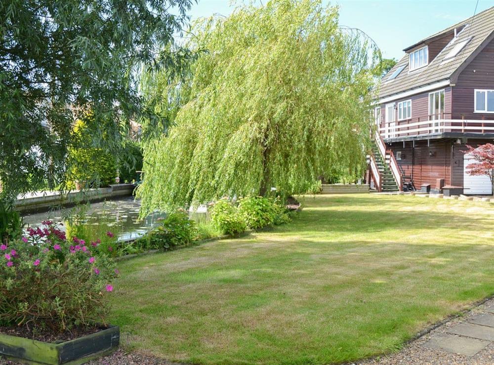 Garden at The Haven in Hoveton, near Wroxham, Norfolk