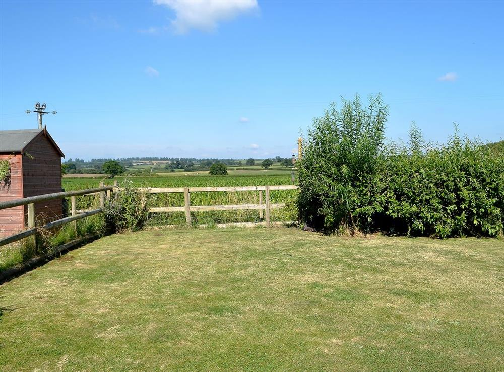Garden at The Kite in Sturminster Newton, Dorset