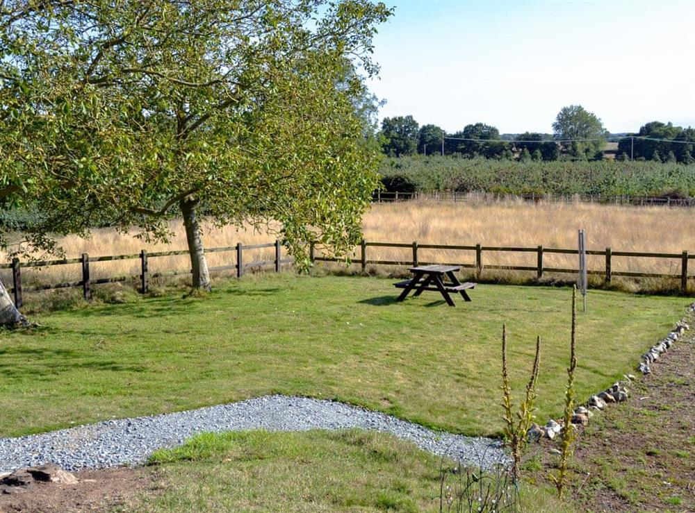 Garden and grounds at The Mill @ The Mill House in How Hill, near Ludham, Norfolk