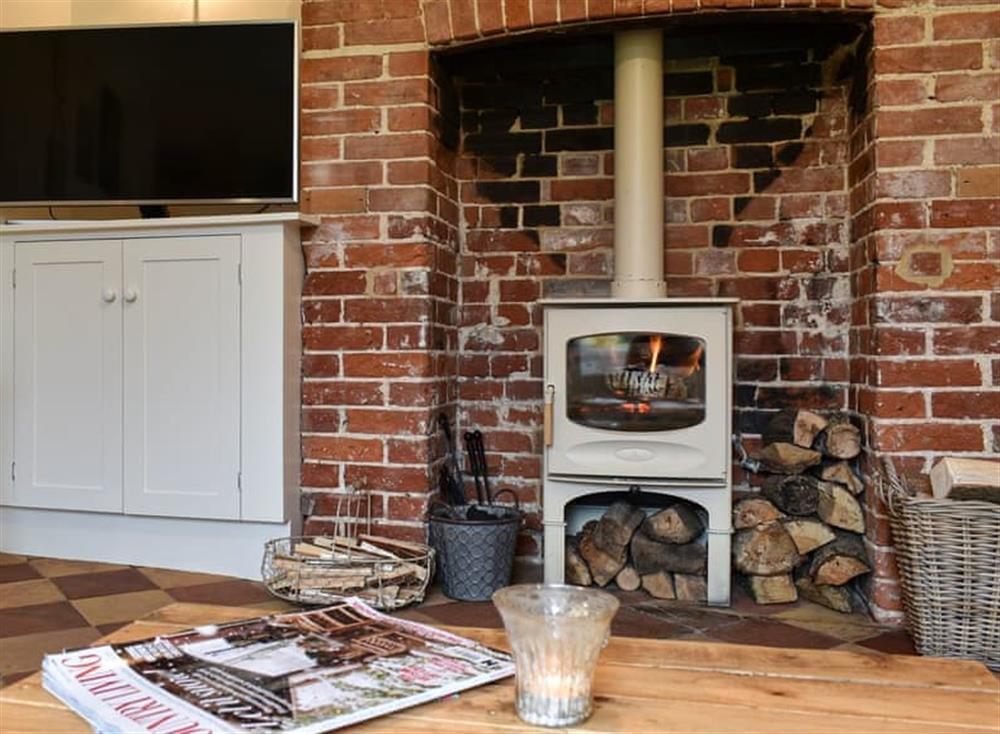 Cosy living room with wood burner at The Nest in Near Diss, Norfolk