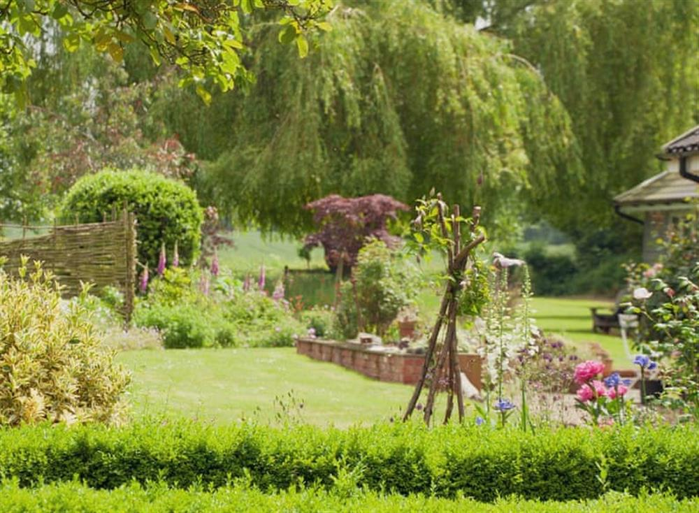 Garden at The Nest in Near Diss, Norfolk