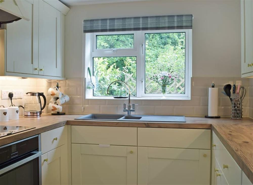 Immaculately presented kitchen at The Old Church House in Llechryd, near Cardigan, Dyfed