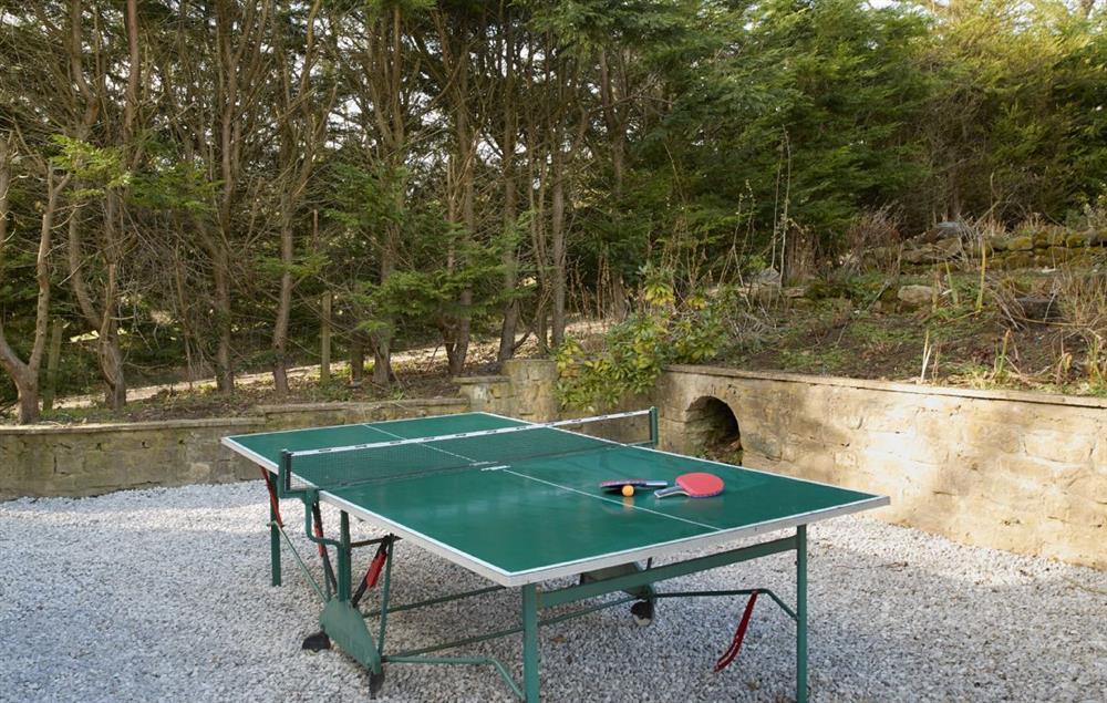 Enjoy a game of outdoor table tennis