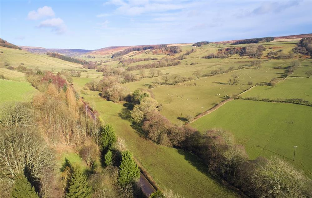 The North Yorkshire Moors seems to stretch forever and make for exhilarating walking country