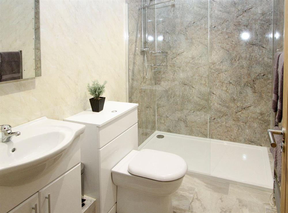 Modern shower room with walk-in shower cubicle at Squirrels Drey,