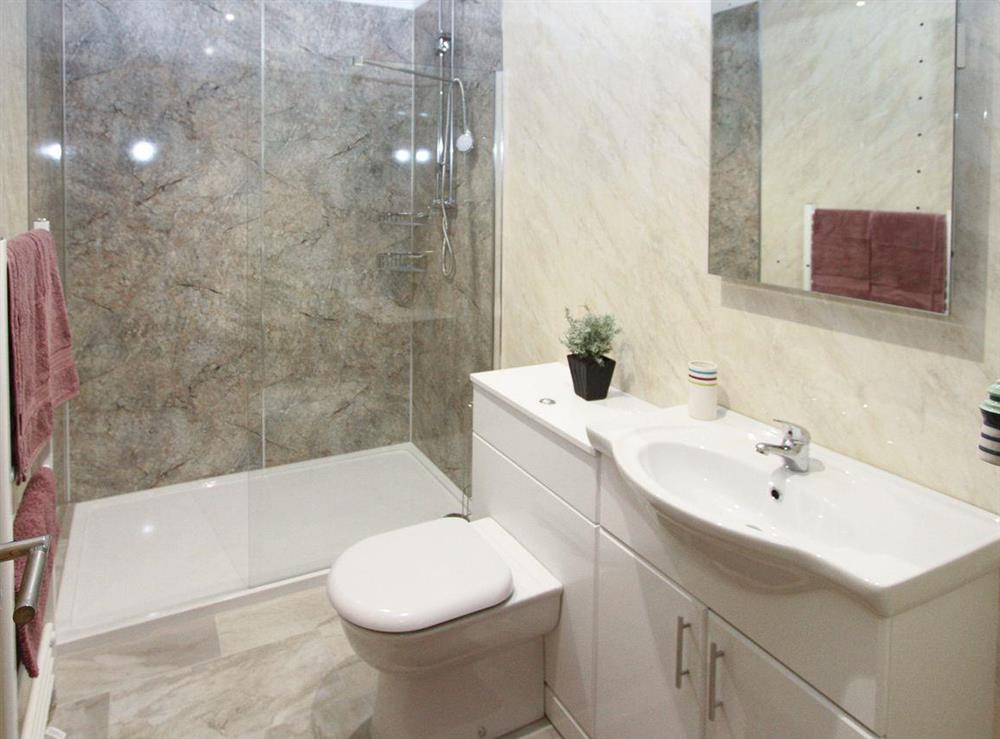 Family shower room with walk-in shower cubicle at Woodpeckers Nest,