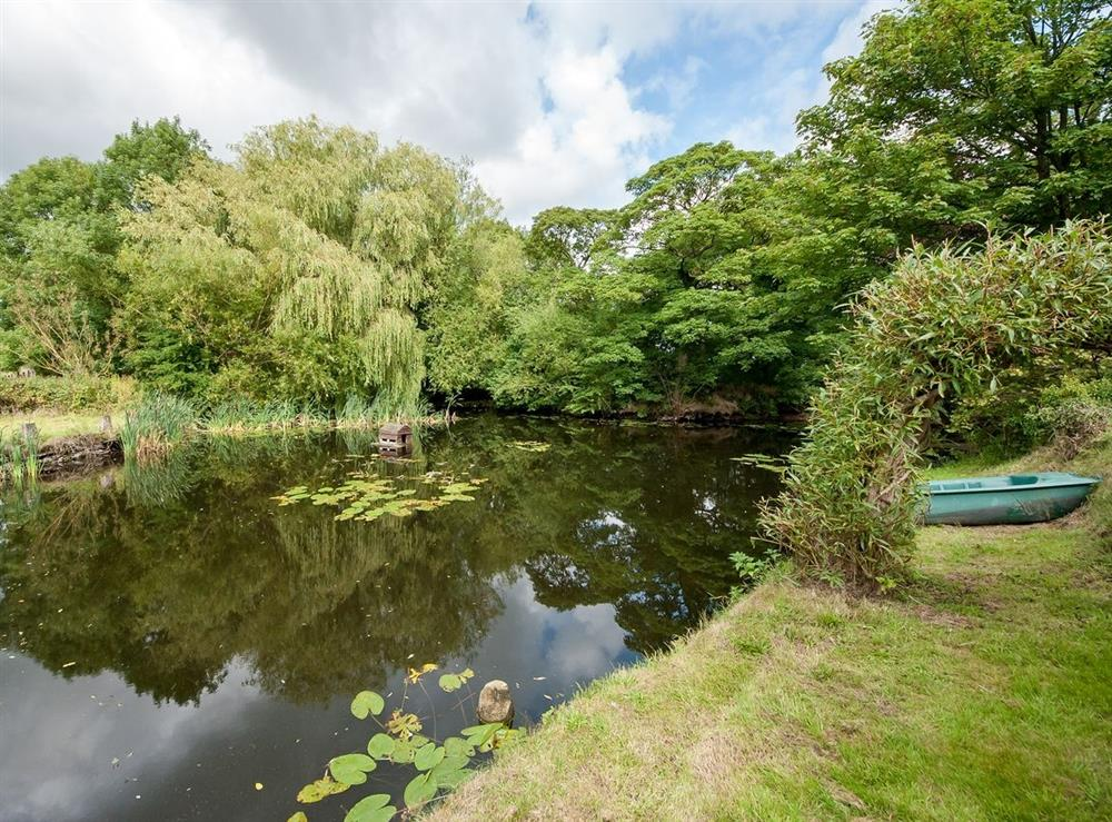 Garden at The Park in Tilstock, Whitchurch, Shropshire., Great Britain