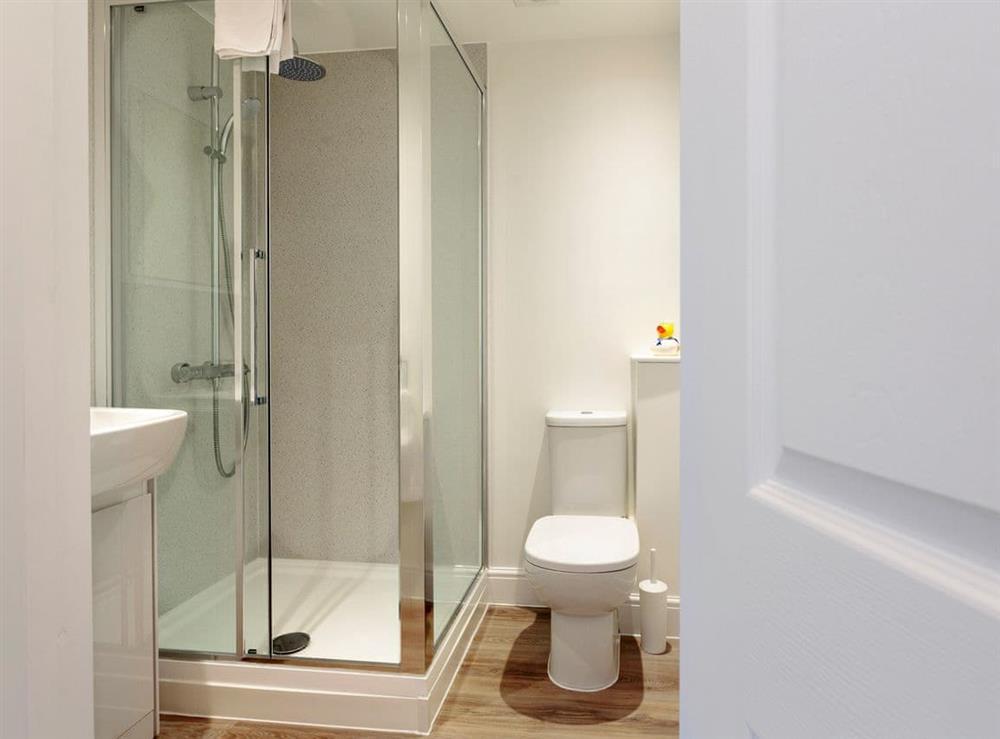 En-suite shower room at Crested Grebe,