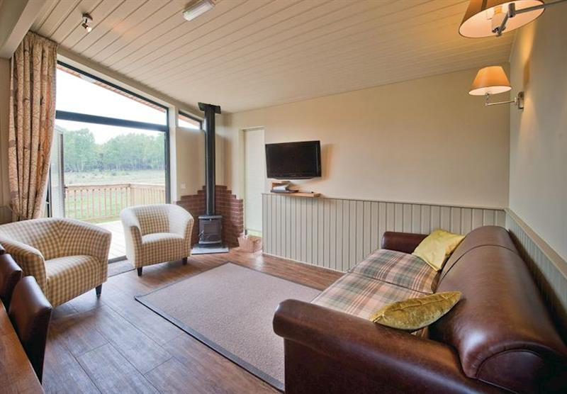 Typical Hideaway Lodge 3 VIP at The Sherwood Hideaway Lodges in Perlethorpe, Newark-on-Trent