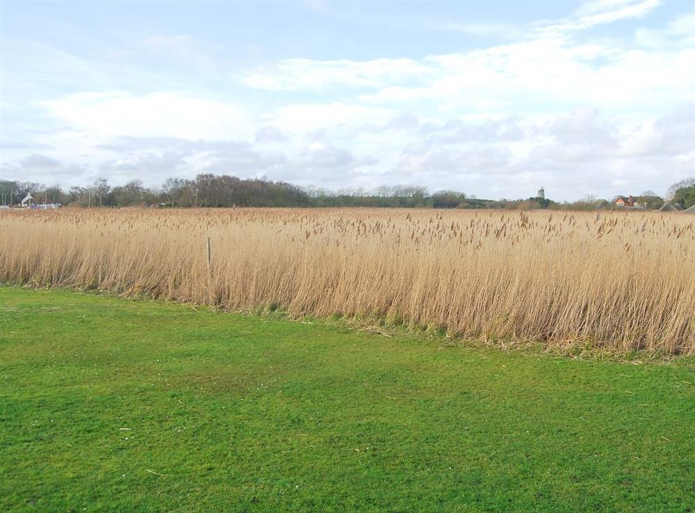 View at The Studio in Hickling, Norfolk., Great Britain