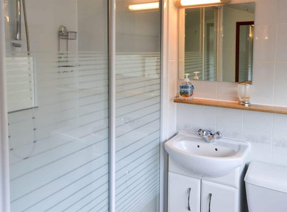 Shower room at The Wherry in Norwich, Norfolk