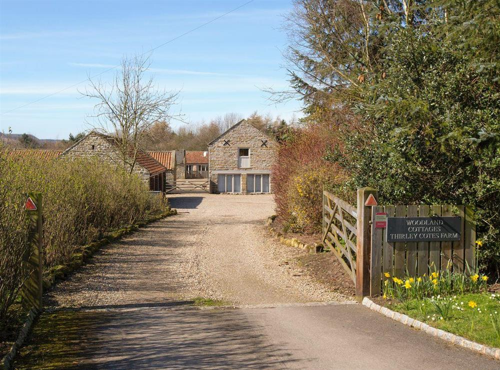 Main entrance to the holiday homes at Sycamore Cottage,