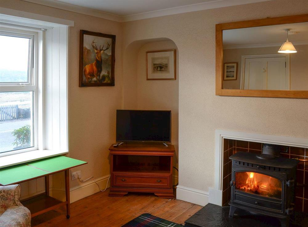 Living room with wood burner (photo 2) at Thistle Cottage in Bonar Bridge, near Lairg, Highlands, Ross-Shire
