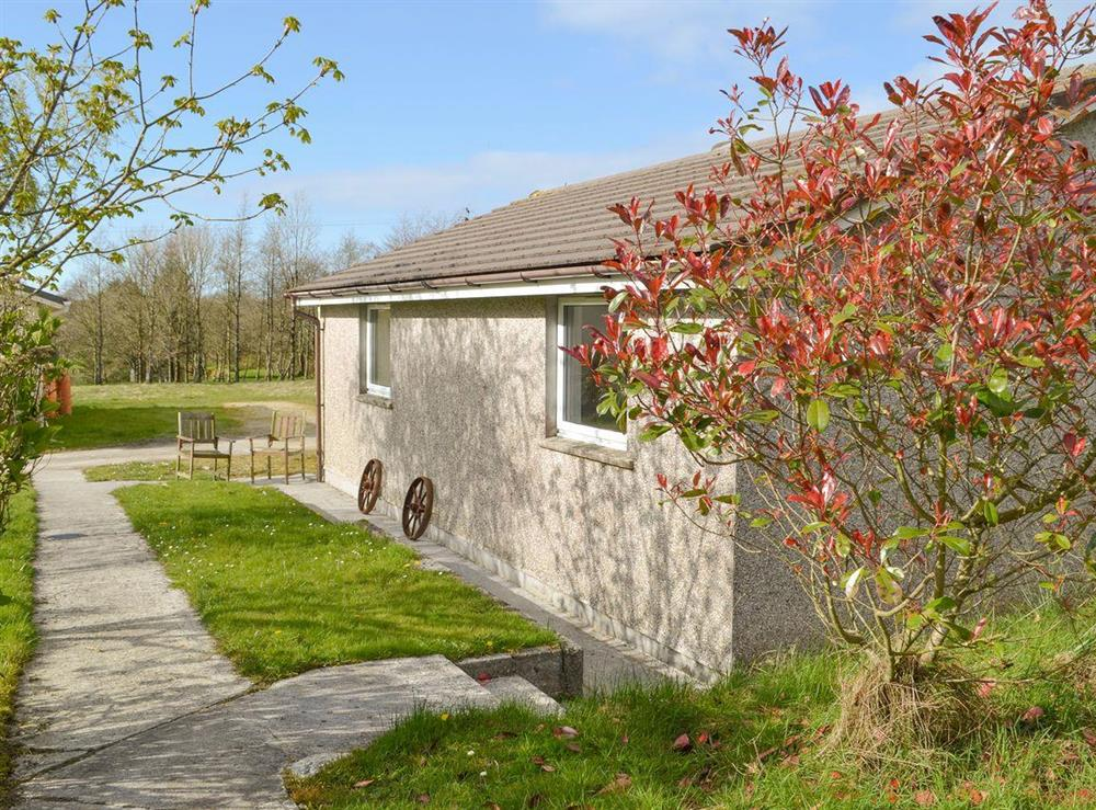 Appealing holiday home at Cedar,