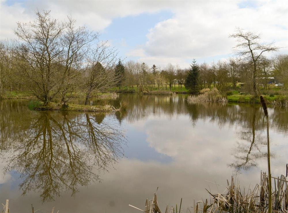 Tranquil lake and grounds at Cedar,