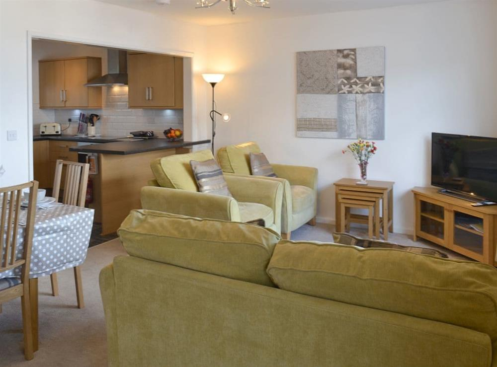 Comprehensive open-plan design at Torbay View in Brixham, Devon