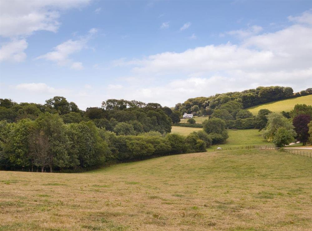 Picturesque rural surroundings at Tree Park in Halwell, near Totnes, Devon