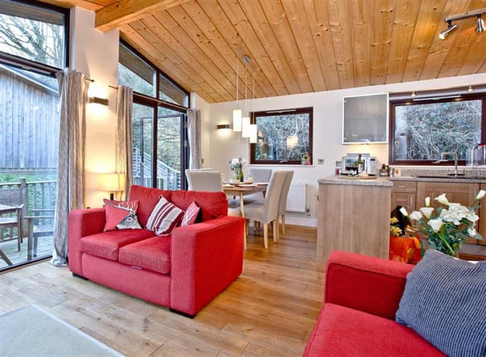 Open plan living space (photo 2) at Treetops at Gara Mill in , Slapton