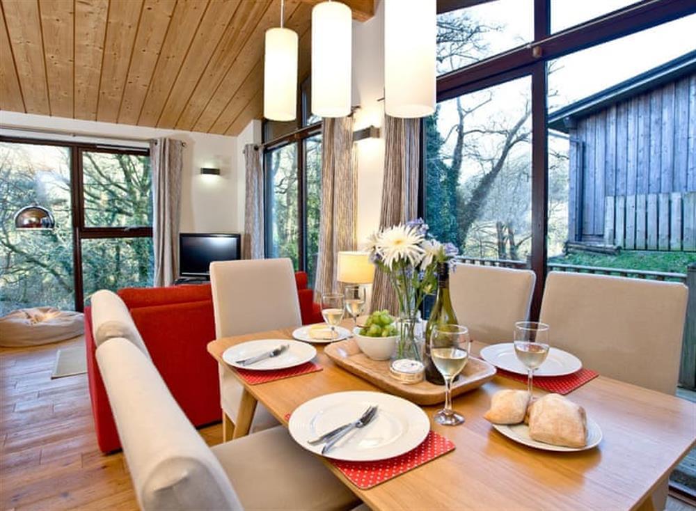 Open plan living space (photo 3) at Treetops at Gara Mill in , Slapton