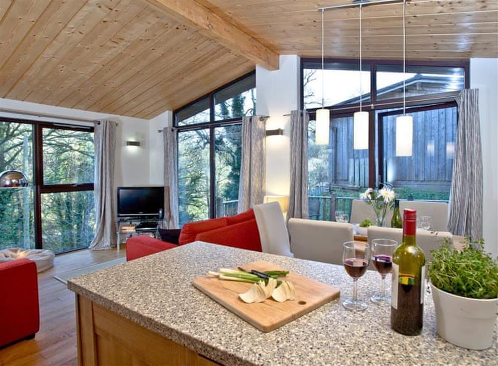 Open plan living space (photo 5) at Treetops at Gara Mill in , Slapton