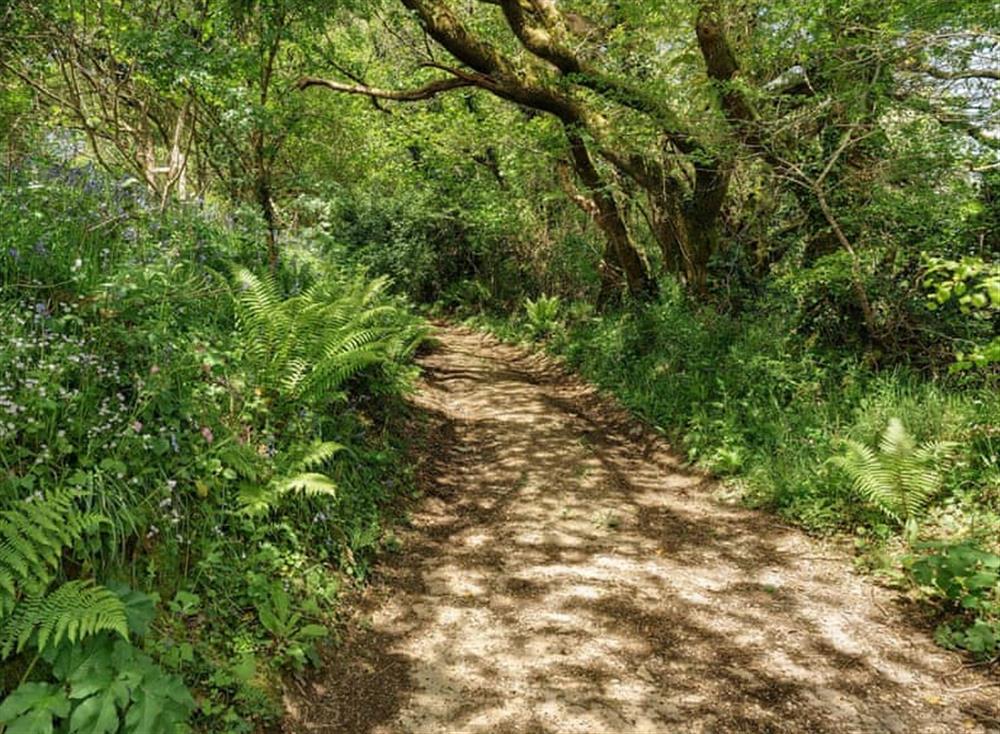 Surrounding area (photo 2) at Treetops at Gara Mill in , Slapton