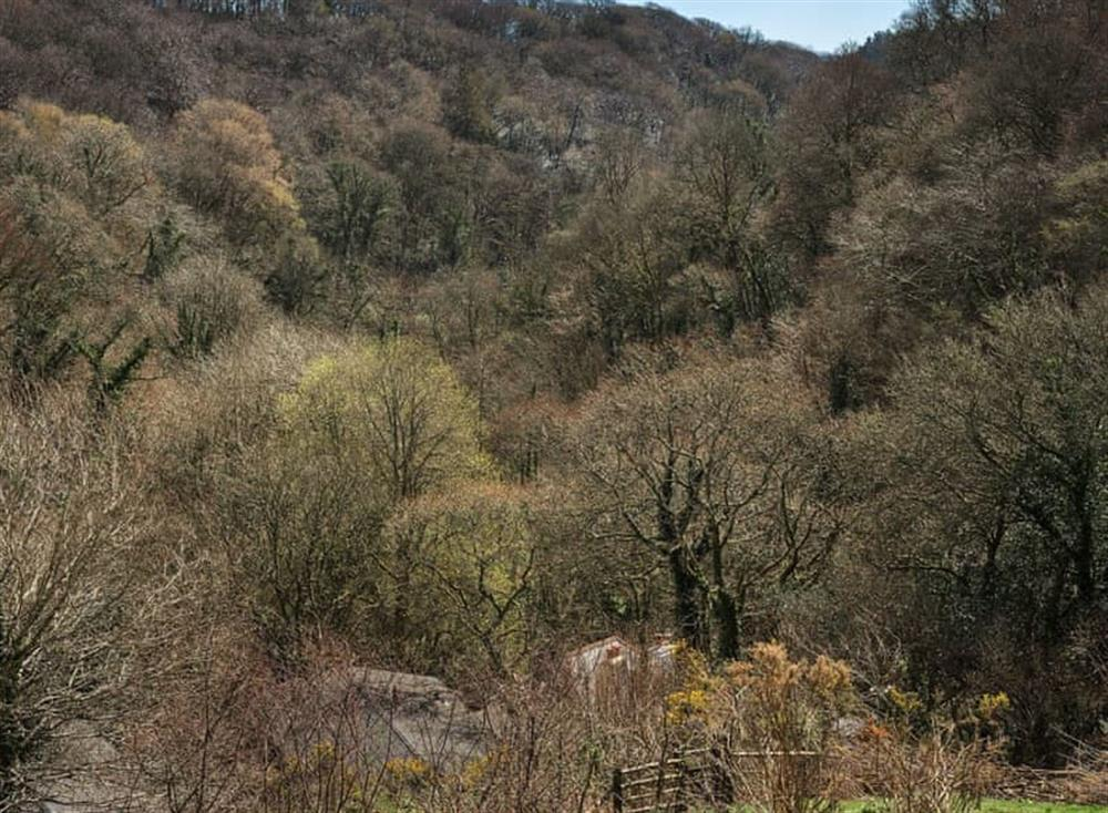 Surrounding area (photo 6) at Treetops at Gara Mill in , Slapton